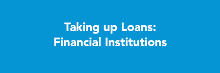 loans_financialInstitutions